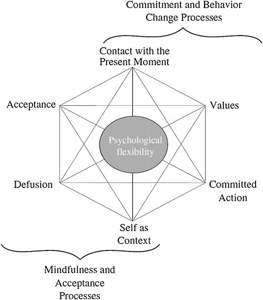 The hexaflex in Acceptance and Commitment Therapy