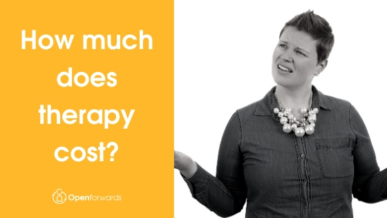 How much does therapy cost?